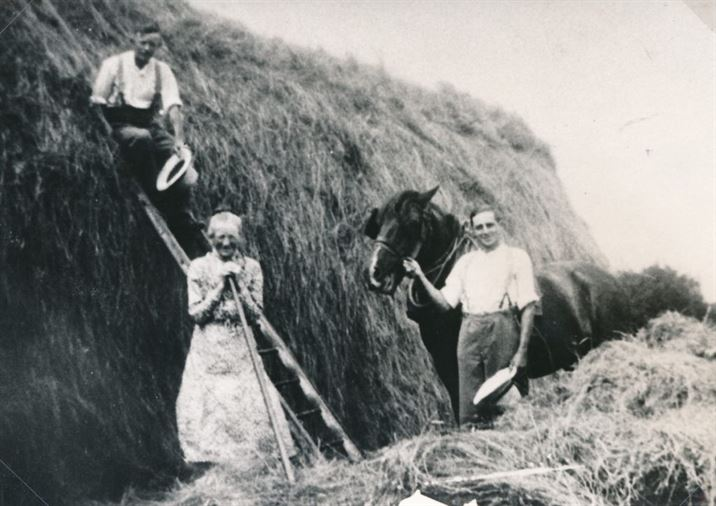 W0830b Haymaking 1927 - Swingey Nooks