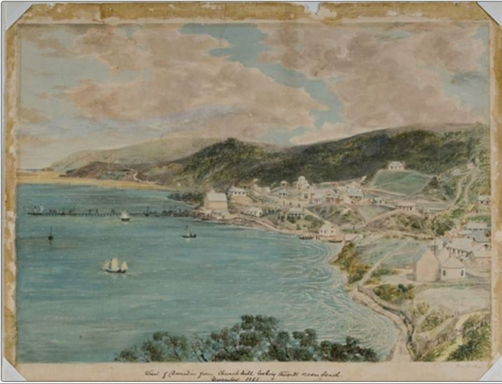 Hocken Collection Dunedin 1851
