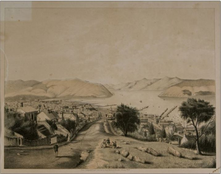 Hocken Collection Dunedin 1869
