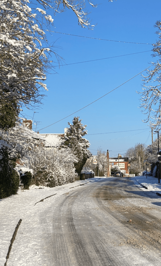 Snowy January (25th Jan 2021)